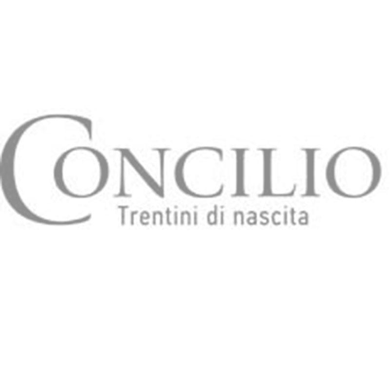 CONCILIO - TRENTINO - ALTO ADIGE